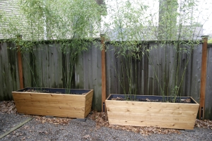Bamboo Rescue An All In One Bamboo Service Based In Portland Or
